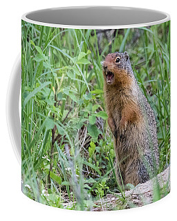 Squirrel Makes Some Noise Coffee Mug