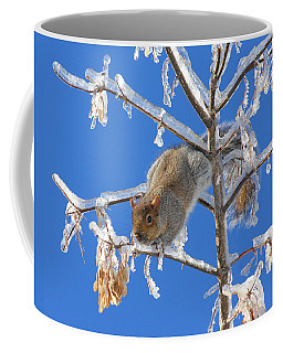 Coffee Mug featuring the photograph Squirrel On Icy Branches by Doris Potter