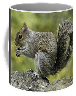 Squirrel, On The Hop Coffee Mug