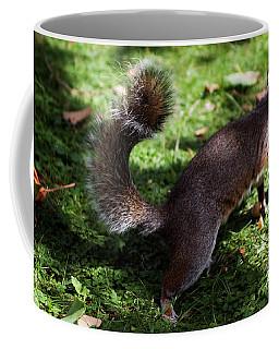 Squirrel Running Coffee Mug