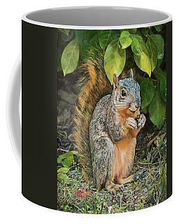 Squirrel Under Bush Coffee Mug