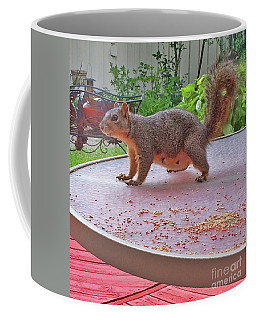 Squirrel Visits Me Coffee Mug