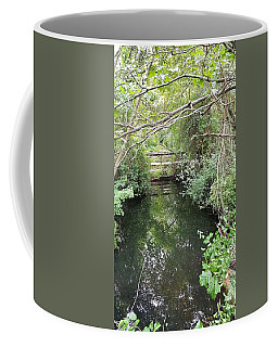 Coffee Mug featuring the photograph St James Water by Rob Hans