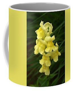 St. Johns Flower 866 Coffee Mug