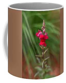 St. Johns Park Flower 872 Coffee Mug