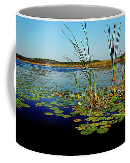 St. Mark's Lake Coffee Mug
