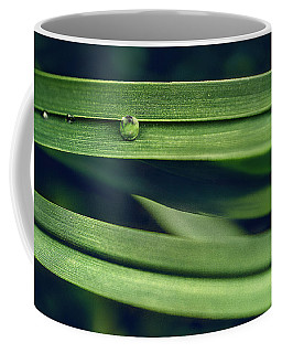 Coffee Mug featuring the photograph Stacked by Gene Garnace