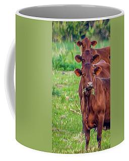 Stacked Up Cows          Coffee Mug