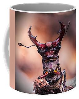 Stag Beetle Stare Down Coffee Mug
