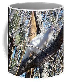 Stalking Ghost Coffee Mug