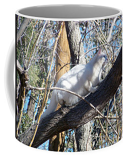 Stalking Ghost Coffee Mug