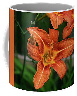 Stamen Of The Lily Coffee Mug