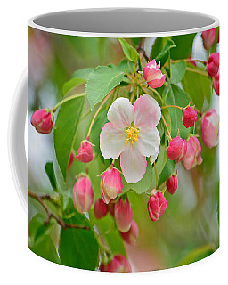 Stand Alone Japanese Cherry Blossom Coffee Mug