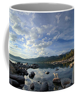 Stand Up For Nature Coffee Mug by Sean Sarsfield