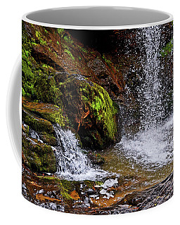 Standing In Motion - Brasstown Falls 011 Coffee Mug by George Bostian