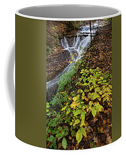 Coffee Mug featuring the photograph Standing On The Edge by Dale Kincaid
