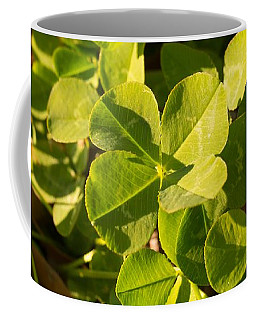 Coffee Mug featuring the photograph Standing Out From The Crowd by MM Anderson
