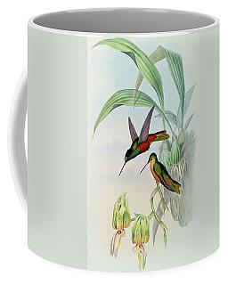 Star Fronted Hummingbird Coffee Mug