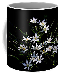 Star Of Bethlehem Coffee Mug