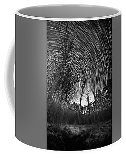 Star Trails - Blue Ridge Parkway Coffee Mug