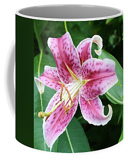 Coffee Mug featuring the photograph Starburst Lily by Bruce Bley