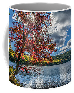 Starburst Tree @ Silvermine Lake Coffee Mug