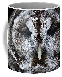Staredown Coffee Mug
