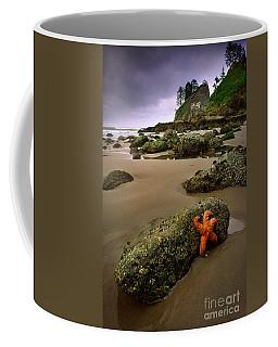 Starfish On The Rocks Coffee Mug