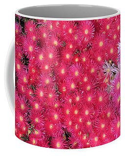 Coffee Mug featuring the photograph Starflowers by Mark Blauhoefer