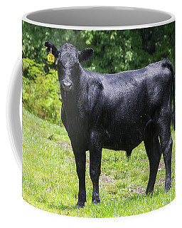 Staring Steer Coffee Mug