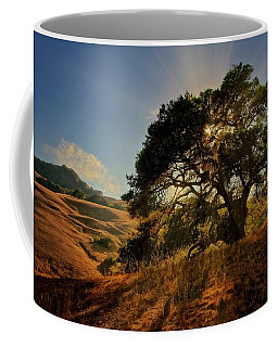 Starlight, California Oak Coffee Mug