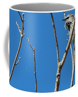 Starling Darling Coffee Mug