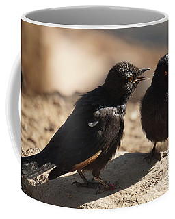Starling Discussion. Coffee Mug