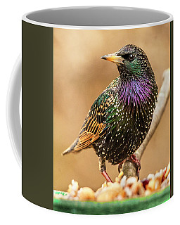 Starling In Glorious Color Coffee Mug