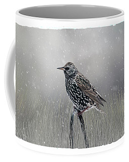Starling In Winter Coffee Mug