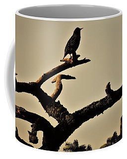 Starling Coffee Mug by Karen Horn