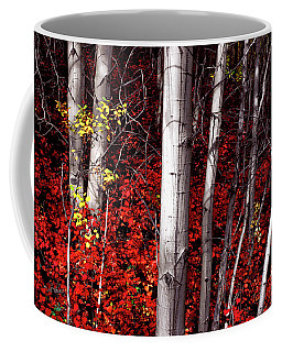 Stealing Beauty Coffee Mug