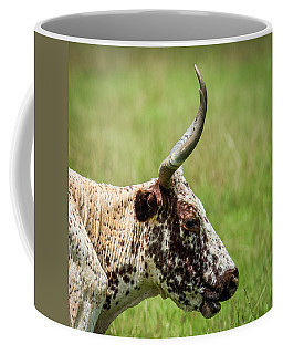 Coffee Mug featuring the photograph Steer Portrait by Paul Freidlund