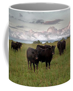 Steers In The Pasture Coffee Mug