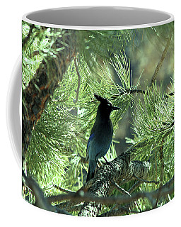 Stellarjay1 Coffee Mug