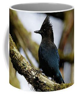 Stellers Jay Coffee Mug