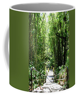 Coffee Mug featuring the photograph Steps In El Yunque by The Art of Alice Terrill
