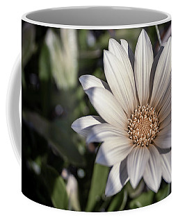 Coffee Mug featuring the photograph Still Dreaming by Alison Frank