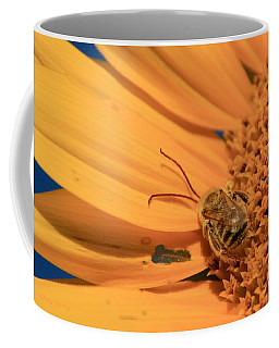 Coffee Mug featuring the photograph Still Sleeping by Chris Berry