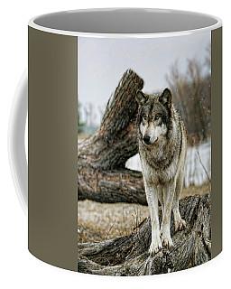 Still Wolf Coffee Mug