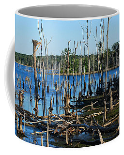 Still Wood - Manasquan Reservoir Coffee Mug