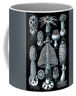 Coffee Mug featuring the drawing Stinkhorn Mushrooms Vintage Illustration by Edward Fielding
