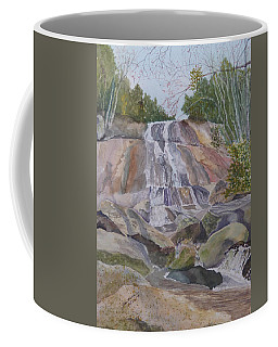 Stone Mountain Falls April 2013 Coffee Mug