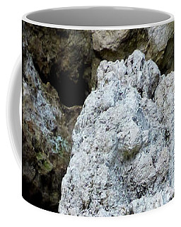 Coffee Mug featuring the photograph Stone Over Time by Francesca Mackenney