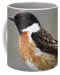 Stonechat Coffee Mug by Terri Waters